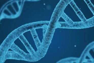 DNA vierkant 1 e1628862272652